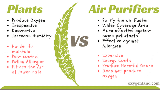 air purifier vs plants table