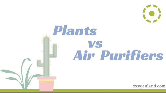 Air Purifier VS Plants – Science or Nature